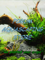 Forum Aquascaping-Store.de200x150r.jpg